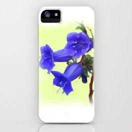 California Bluebell Flower iPhone Case