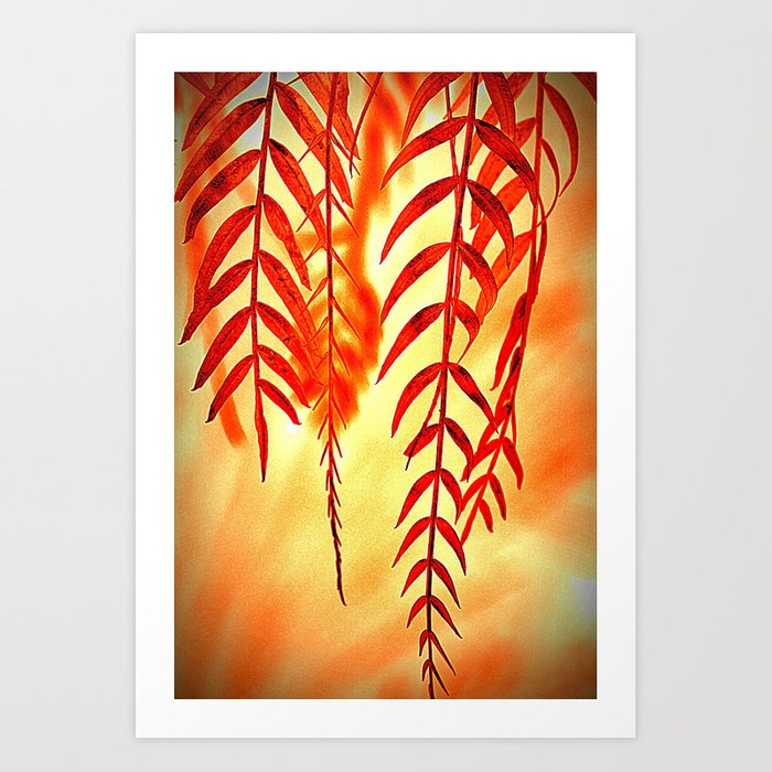 Nature willow Art Print