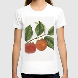 Vintage persimmon twig T-shirt