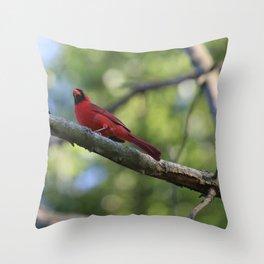 Cardinal Series III Throw Pillow