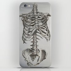 Skeleton Study Slim Case iPhone 6s Plus