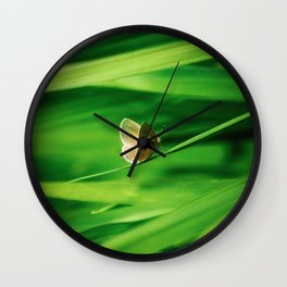 Lonely Butterfly Wall Clock