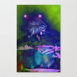 in to the night sky Canvas Print