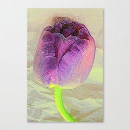 Purple Crush Canvas Print