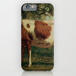 Vintage Print - Birds and Nature (1902) - Domestic Cattle iPhone Case