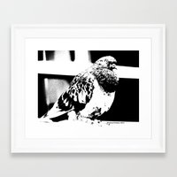 pigeon Framed Art Prints featuring Pigeon by Manford Holmes