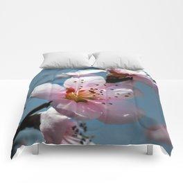 Peach Blossom Blue Sky Comforters