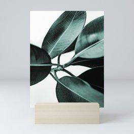 Minimal Rubber Plant Mini Art Print