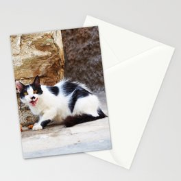 Hungry Greek cat Stationery Cards