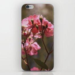 Flower XVII iPhone Skin