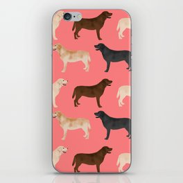 Labrador retriever coats of all colors dog breed pet portraits dogs pets unique pet themed gifts iPhone Skin