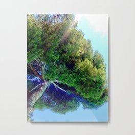 Shade Above The Pool Metal Print