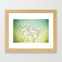 Birds Flying Photography, Birds Fly Sky, Mint Turquoise Yellow Nursery Art Framed Art Print