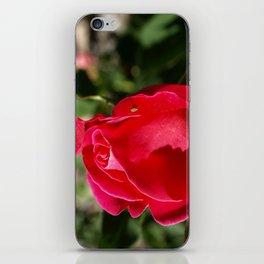 """Rose Bug"" iPhone Skin"