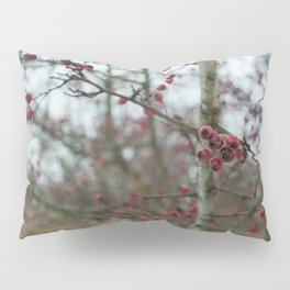 Rosa Canina, dog rose Pillow Sham