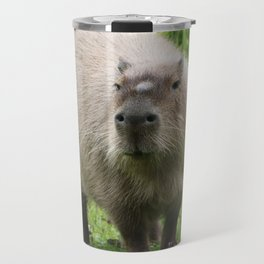 So cute capybara Travel Mug