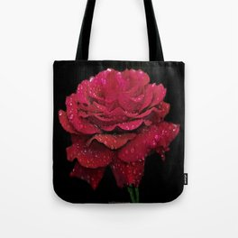 Love's Promise Tote Bag