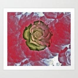 Rose and Rosey Art Print
