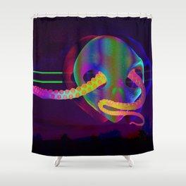 Interior Shower Curtain