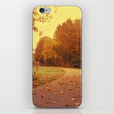 Autumn scenery #3 iPhone & iPod Skin