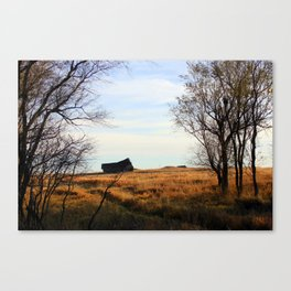 Seasoned Shed Canvas Print