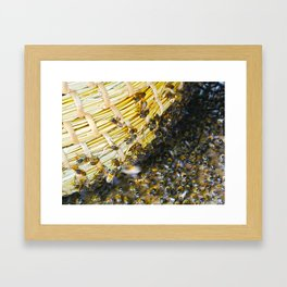 Bees! Framed Art Print