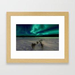 Winter Northern Lights Dog Sled (Color) Framed Art Print