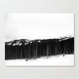 Breck Canvas Print