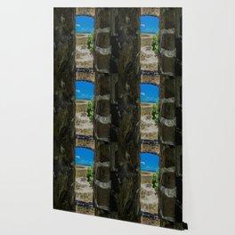Break Free of Your Walls Wallpaper