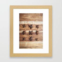Stars and Stripes of Baking - Star Anise Framed Art Print