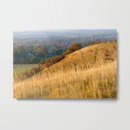 Grassy hillside Metal Print