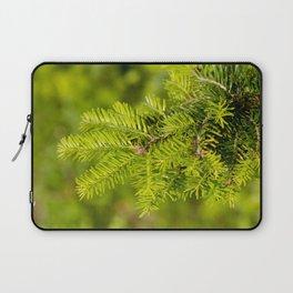 Green coniferous fresh shoots detail Laptop Sleeve