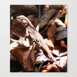 Forest Lizard Canvas Print