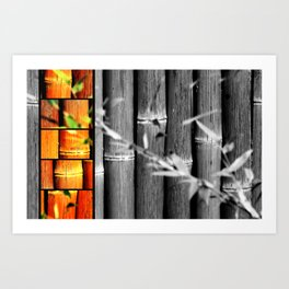 Bamboo in Color and Black & White Art Print
