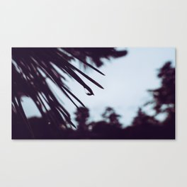 Back to Black Canvas Print