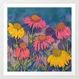 Colourful Coneflowers Art Print