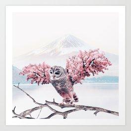 Sakura Owl Kunstdrucke