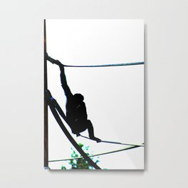 There's Apes About Metal Print