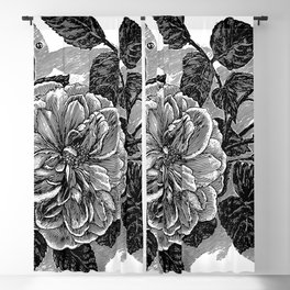 Roses 1894 Blackout Curtain