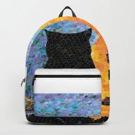 Reflecting Backpack
