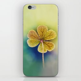 Heart-shaped Clover Oxalis Macro. St Patrick's Day iPhone Skin