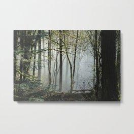 Pacific Northwest Woods Metal Print