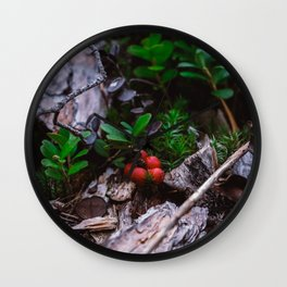 Lingonberry close up at forest in Finland. Wild red lingonberry print. Wall Clock