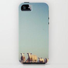 Holywooly iPhone Case