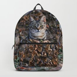 Sitting cat posing Backpack
