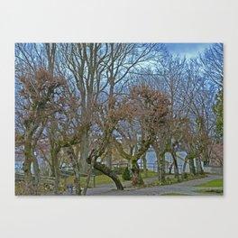 Castle garden Laupheim Canvas Print