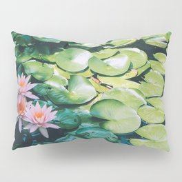 Beauty in the Shadow Pillow Sham