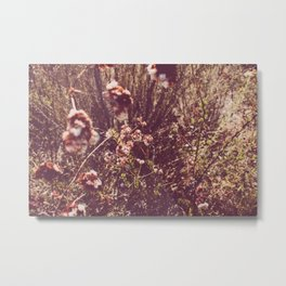 It's a Rose-Colored Life Metal Print