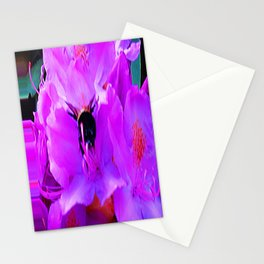 Head First! Stationery Cards