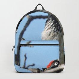 Woodpecker Lookup Backpack